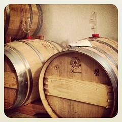 Red Red Wine... (barockschloss) Tags: square oak barrel winery squareformat barrique cask weingut fass earlybird iphoneography instagramapp uploaded:by=instagram