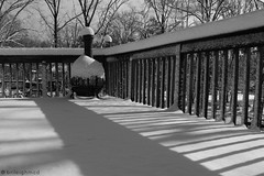 The Porch's Symmetry (Bri Leigh McD) Tags: blackandwhite snow lines weather canon backyard snowy stripes patterns symmetry porch canonrebel picmonkey brileighmcd stormnemo