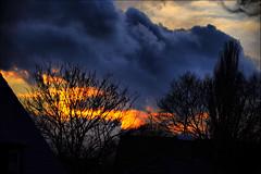 earth wind and fire (LL) Tags: trees roof bird clouds sonnenuntergang sundown wolken steam dach bume vogel dampf