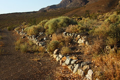 Foundation at the Base of the Mine (lefeber) Tags: california road mountains abandoned landscape ruins mine desert whitemountains roadtrip brush foundation valley plus stonewall dirtroad bushes remains eveninglight owensvalley hammermillmine