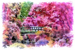 A Bridge In Paradise (Peter Solano. Pursuing a dream!) Tags: bridge pink flowers blue red summer reflection green water catchycolors stream country yelow brids