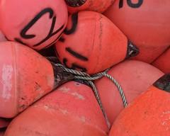 buoys (bambe1964) Tags: canada novascotia chester buoyant