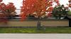黄梅院 Ōbai-in (ɑlɑstɑr ó clɑonɑ́ın) Tags: autumn japan temple maple kyoto momiji 京都 日本 紅葉 japon giappone japón daitokuji 大徳寺 oubaiin 黄梅院 obaiin kyo¯to2012 kyōto2012