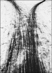 spuren (Tannhuser) Tags: schnee bw white snow black germany deutschland nikon spuren lneburg niedersachsen d90 lowersaxonia sendker