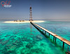 Kuwait - Garooh Island from High POV (© Saleh AlRashaid / www.Salehphotography.net) Tags: صالح الرشيد الكويت جزيرة قاروه الارياق kuwait aryag garooh island saeh alrashaid hasselblad h4d