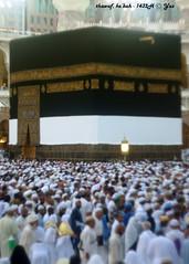DSC02296_house of Allah_5R (yaz1434) Tags: 50mm sony f2 umrah hajj kabah mekkah manuallens alharam baitullah leicasummitar thawaf nex5