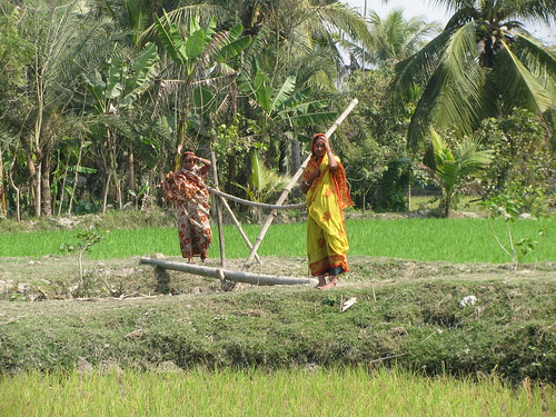 Women farmers in Morrelganj Upazila, Bangladesh. Photo by Mélody Braun, 2013.