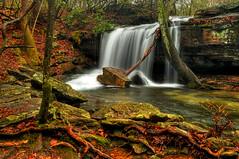 Laurel Falls (the waterfallhunter) Tags: desotostatepark laurelcreek laurelfalls dekalbcounty fortpaynealabama alabamawaterfalls alabamastatepark