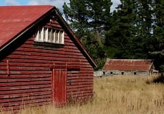 Red-n-Rusty (Tones Corner) Tags: red rustic shed oldbuilding woolshed nzscene northcanterbury rusticbuilding nzrural