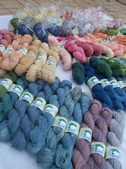 April 2013 Full Inventory (ShearedBliss) Tags: wool silk yarn dye dyeing fiber roving handdyed fiberarts naturaldye