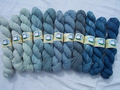 Blue Sock Yarn (ShearedBliss) Tags: wool yarn dye dyeing fiber handdyed fiberarts naturaldye