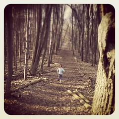 On a run with @melissaardery #run #running #michigan #woods #trees #trail #getyourrunon (bryan elkus) Tags: square squareformat earlybird iphoneography instagramapp uploaded:by=instagram