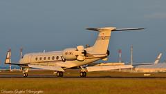 Gulfstream V HB-IMJ - G5 Executive AG (Goepfert Damien) Tags: paris plane airport damien g5 v avion gulfstream roissy cdg adp aroport gulfstreamv roissycharlesdegaulle glf5 goepfert hbimj damiengoepfert