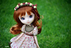 100 Photo Challenge (8/100) (_Lalaith_) Tags: blue brown flower floral eyes rust doll acrylic dress alice stock jardin du chips redhead melody wreath boutique carrot hippie crown pullip dolly hairband diadem rewigged