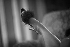How about those shoes (Dennis Perry) Tags: blackandwhite shoe nikon slipper d800 helios402 fredricks