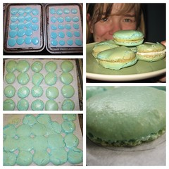 Partial Success! ( EkkyP ) Tags: blue food smile self square mosaic almond 365 lemoncurd selfie buttercream macarons project365 polytych 365days totw sweettreet gg2s macawrong
