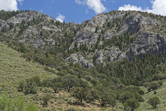 DJT_1058 (David J. Thomas) Tags: humboldtnationalforest forest mountains backroads ely nevada nv travel vacation