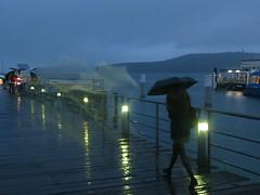 Rainy Day (CNDoz) Tags: rain dawn rainyday manly sydney sydneyharbour ferryterminal manlyferry cndoz