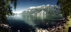 Mols Beach (Elliott Bignell) Tags: switzerland suisse svizzera schweiz ostschweiz rheintal rhin walenstadt mols walensee walen lake churfirsten churfrsten alps alpen alpine alp berge berg bergsee gebirgssee