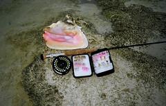 Bonefish beach (mysticislandphoto) Tags: flyfishing fishing bonefish beach conch bahamas