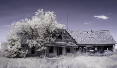 La Hacienda (explore) (unknown quantity) Tags: sky clouds grass deterioration dilapidation brokenwalls brokenroof infrared unpaintedwood weathered decay trees antenna shadows hss abandonedhouse peelingpaint