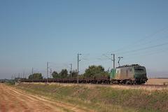 BB 27054 / Bissezeele (jObiwannn) Tags: train fret ferroviaire locomotive prima