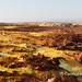 Dallol landscape