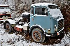 Om tigrotto (riccardo nassisi) Tags: truck camion cava abbandonata abandoned scrap scrapyard rust rusty rottame relitto ruggine ruins fiat epave lugagnano piacenza pc