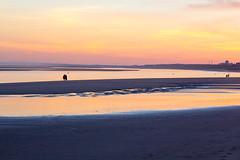 Playa La Bota (Llrup) Tags: playa beach sea mar sun sol atardecer sunset vacations vacaciones huelva andaluca espaa nature naturaleza sand arena plantas plants