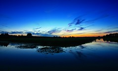 Blue hour (M a u r i c e) Tags: blue sky dusk evening night netherlands wideangle ultrawidezoom efs1022mm maarssen water polder reflections silhouettes nature horizon