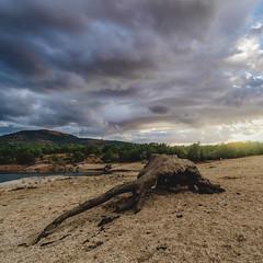 Naturaleza Muerta (KitosRD) Tags: sky landscape sunset sun fuji cielo naturaleza paisaje sol atardecer tronco fujifilm samyang 11 muerta ponton segovia 12mm xt10