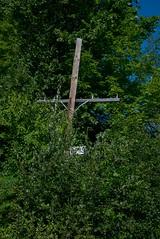 DSC_9201 (Copy) (pandjt) Tags: gatineau qubec canada ca walkabout quebec sentierdesvoyageurs cpr railwaytracks