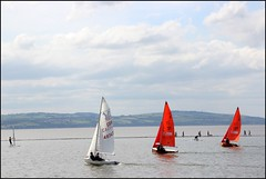 West Kirby Wirral  230816 (36) (over 4 million views thank you) Tags: westkirby wirral lizcallan lizcallanphotography sea seaside beach sand sandy boats water islands people ben bordercollie dog beaches reflections canoes rocks causeway yachts outside landscape seascape
