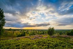 Heideblick (REAL PLUS) Tags: heide nature landschaft blte wolken wetter regen farbenfroh nikon d7200 tokina1116mm norddeutschland deutschland natur