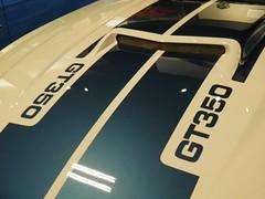 Shelby9-23-16_049 (Puckfiend) Tags: shelby cobra lasvegas carrollshelby cars automobile
