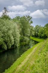 Rhinau (albisserl) Tags: shrubbery germany rheinau tree river badenwrttemberg deutschland deu