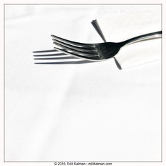 In homage of Andre Kertesz (edit eye) Tags: abstract andrekertesz expressyourself fork photography quote shadow