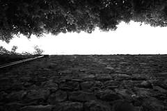 Tratto di Mura Comunali, Riviera Mussato, Padova (Davide Anselmi) Tags: davideanselmi 2016 padova mura muracomunali bianconero bn blackwhite bw