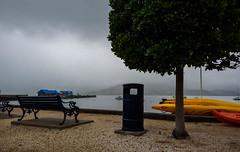 Dark Skys Ahead (Jocey K) Tags: newzealand akaora scene seat bench mist tree bin buildings wharf boat kayaks clouds bankspeninsula