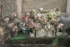 Unused Burial Flowers, Winston Georgia (Lee Edwin Coursey) Tags: funeral artificial nikond5200 nikon flowers desaturated exploring burial wilted georgia desat cemetery urn southexplore
