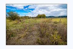 Road long forgotten (Krasne oci) Tags: landscape bluesky clouds nature wildlife artphotography evabartos flickr canon7d