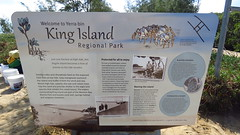 mjc-2016-08-16-IMG_2056 (wiccked) Tags: birding birds wellingtonpoint kingisland