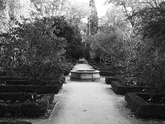 (sftrajan) Tags: madrid blackandwhite bw españa fountain garden blackwhite spain espanha path jardin hedge jardimbotânico botanicgarden espagne spanien spagna spanje jardínbotánico ortobotanico 西班牙 スペイン botanischergarten jardíbotànic マドリード royalbotanical ogródbotaniczny испания 马德里 realjardínbotánicodemadrid royalbotanicalgardenofmadrid мадрид