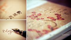 Blogging 52/365 (Wanda Abbing Photography) Tags: lensbaby pen paper photography blog wanda diptych bokeh pro dgo day52 composer abbing canon7d day52365 doubleglassoptic 3652013 week8theme 365the2013edition 21feb13
