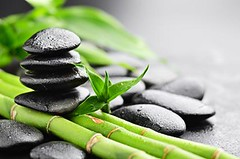Growth (Darius.30) Tags: life new plant black detail green water beauty leaves rock stone closeup asian leaf drops healthy flora natural symbol grove stones background group decoration row boulder fresh bamboo growth pebble dew zen lucky massage medicine balance concept therapy care spa heap herb alternative freshness aroma handful treatment aromatherapy stability russianfederation