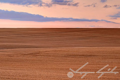Wheat field in Hungary, HDR (Stawroncs) Tags: food cloud plant dawn high nikon europe hungary dynamic wheat hill agriculture yield hillside range protection hdr stacked agronomy zempln borsod agronomist bogcs abaj 18105mm d5100
