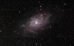 2013 M33 Aut0_1_2_5 with Scopos APO TL805 + Astronomik CLS + 550D (rocco parisi) Tags: 550d 80mmf7 astronomia astronomy astrophotography biancavilla deepsky deepspace dslr eos550d galassia galaxy inquinamentoluminoso lightpollution italia italy m33 ngc598 rebelt2i scopos scopostl805 sicilia sicily sky t2i tl805 universe astrometrydotnet:version=14400 astrometrydotnet:id=alpha20130388386669 astrometrydotnet:status=solved roccoparisi night