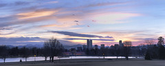 City Park Panoramic (b.tormanen) Tags: park city trees sunset panorama color water clouds photoshop sunrise spring colorado cityscape stitch denver panoramic tamron hdr panaramic d90 2875