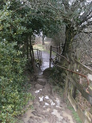 Path/Footbridge, Stanley Brook, Stanley, Derbyshire (eamoncurry123) Tags: public footbridge path derbyshire stanley brook footpath publicfootpath stanleybrook