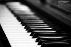 Keyboard (Mr.Navas) Tags: show brazil musician music brasil canon banda keyboard teclado band piano musical sound musica instrument som pianist instrumento musico tecladista